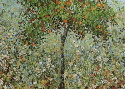 Seville Orange Tree 120cm x 100 cm £3500