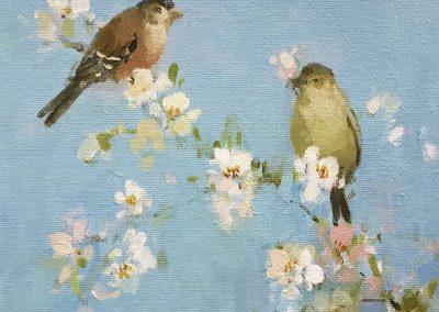 Song Birds on Blossom